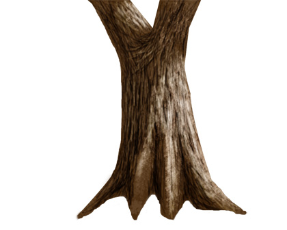Image of the tree with the lightest value applied