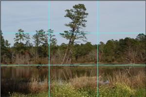 Lake Scene Divided Into Thirds