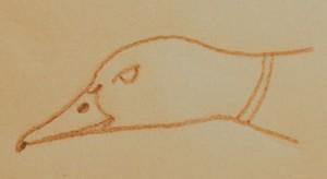Mallard Drake Head Sketch