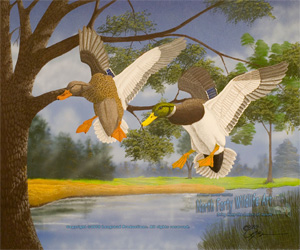 Wildlife Art Riverbend Mallards