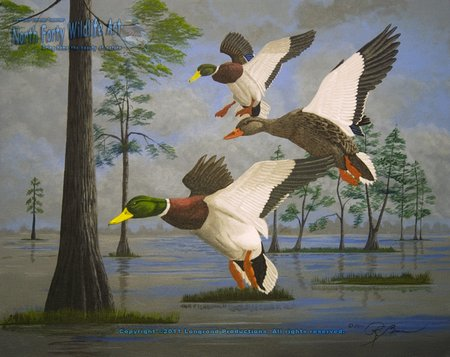 Wildlife Art, Mallard Ducks